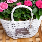 Rose Duo Basket