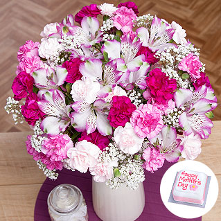 A beautiful Mother's Day gift of Spray Carnations in shades of pink alongside lavender-edged Alstroemeria and finished with delicate Gypsophila.<br /><br />This gift also includes a miniature 'Happy Mother's Day' iced fruitcake.