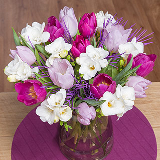 This pretty arrangement of Tulips and Freesias will make a wonderful gift to send this Spring.<br /><br />A combination of lavender and purple Tulips are joined by delicate white Freesias and complemented by purple Grevillea leaf.
