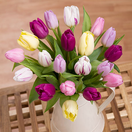 A striking mix of 20 pastel coloured Tulips from Amsterdam, making a colourful spring display.