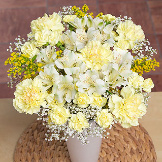 A beautiful and eye-catching bouquet which celebrates the bright colours of the sun.<br /><br />Yellow Carnations and white Alstroemeria are joined by sunny yellow Solidago and delicate Gypsophila.