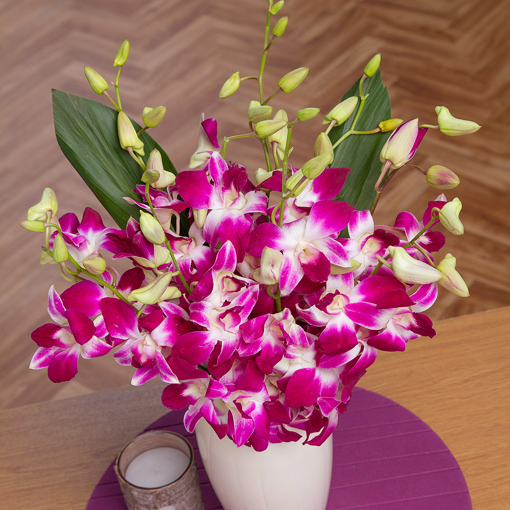 An exotic oriental bouquet of long stemmed Dendrobium Orchids in a vibrant fuschia colour. This delicate flower will enhance any occasion with its stunning oriental beauty.<br /><br />Grown in Thailand on beds of coconut shells, we choose a strong, long lasting variety.