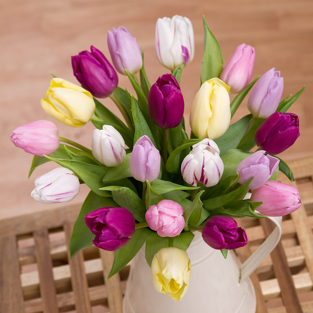 Send the scents of spring and brighten up the dark nights with this pretty bouquet of 20 pastel coloured Tulips 