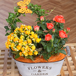 Autumn Flower Planter