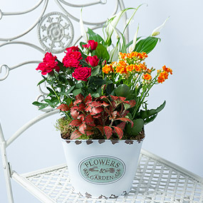 Fall Flower Planter